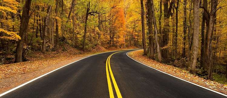 mew emgland road trip